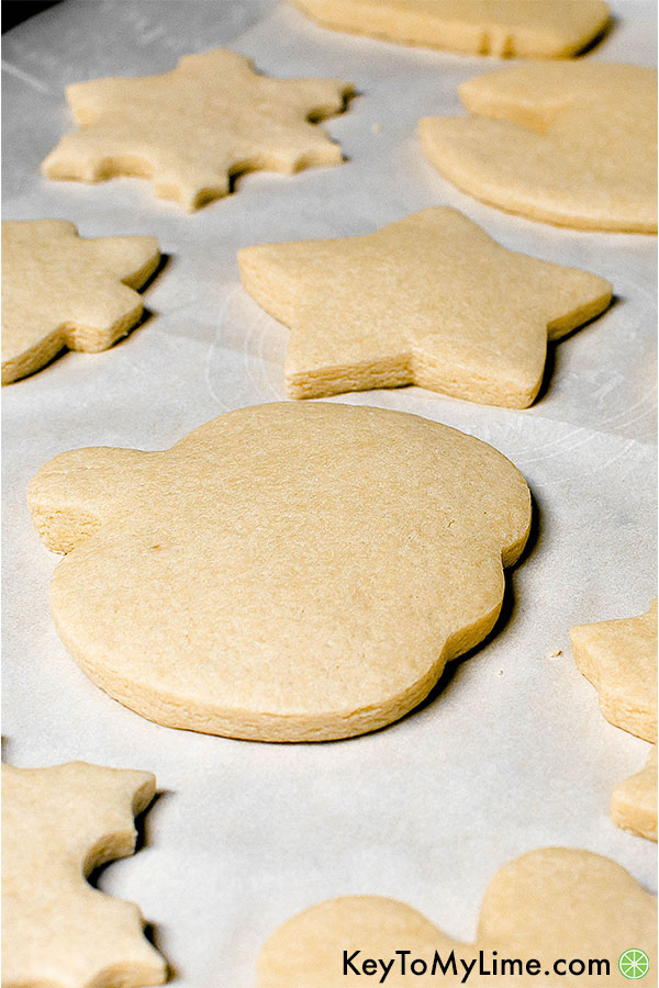 Sugar cookies fresh out of the oven.