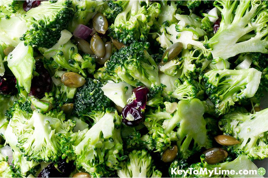 A close up image of broccoli cranberry salad.