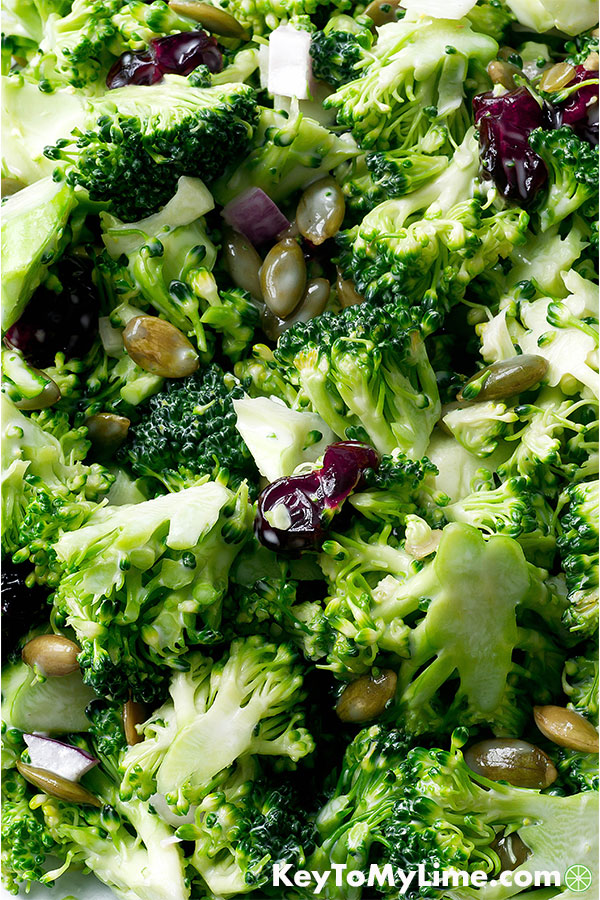 Broccoli Cranberry Salad Recipe Key To My Lime